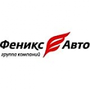 Феникс-Авто, Группа компаний