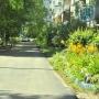 Омск, двор, ремонт, проверка, Сергей Алексеев