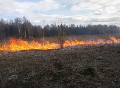 МЧС настаивает на противопожарном режиме с 29 апреля