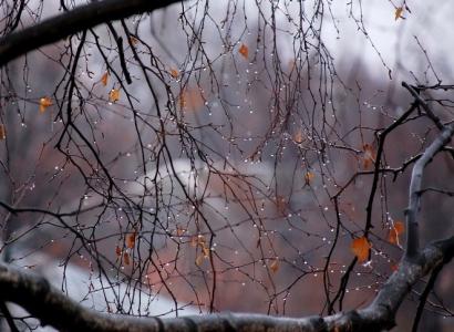 В сентябре будет мокрый снег