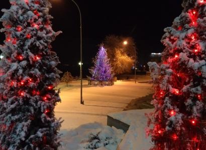 Новогодние мероприятия Омска
