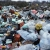 Желание временно складировать мусор появилось только у одной омской компании