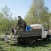 В Омске зазеленеет еще одна аллея