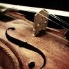 В Омской области правительство выделяет 6,265 млн руб. на покупку скрипки из областного бюджета
