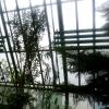 Три жителя Омска унесли из теплиц 100 кг труб