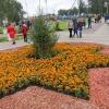 В Омске из пустыря на Московке сделали парк