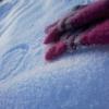 В Омской области санитарка замерзла у своего дома