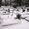 На кладбищах Омска в течение пяти дней будут стоять биотуалеты