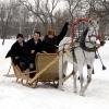 В Омской области автобусное сообщение могут заменить гужевыми повозками