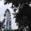 Парк 300-летия Омска сделают современным местом отдыха