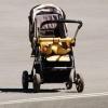 В Омске пройдет парад детских колясок