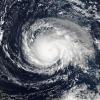Россия готова помочь США, Франции и Кубе в ликвидации последствий урагана «Ирма»