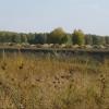 Муромцевский район Омской области специализируется на льнопроизводстве и молочном животноводстве