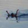 12-летний омич утонул при попытке перейти Иртыш вброд