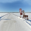 В Омской области готовятся к открытию 9-ти ледовых переправ