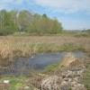 В Омске подали в суд на предприятие за слив отходов