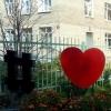 Рецидивист-романтик похитил «сердце» из ландшафтной композиции в Омске