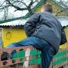 В Ленинском округе Омска дачный вор за лето наворовал на 160000