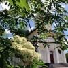 Прогноз погоды в Омске с 12 по 14 мая