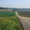 Правительство РФ выделило Омской области около 230 миллионов рублей на сельские дороги