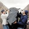 Услуги вывоза мусора от частной компании
