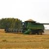 В Омской области уже собрали на 1 миллион тонн зерна больше по сравнению с 2015 годом
