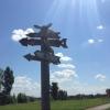 Заповедные уголки Омской области набирают популярность