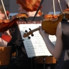 Духовой оркестр Омской филармонии устроит дефиле в парке «На Королёва»