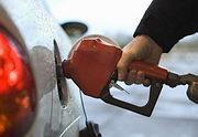 Омские ученые пустят беляши на бензин