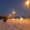 Всю ночь дорожники убирали снег и посыпали омские магистрали солью