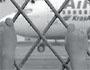 Стюардессы объявили голодовку