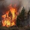 В Омской области объявлена повышенная пожароопасность