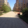Обрабатывать территорию около многоэтажек от клещей должны ТСЖ