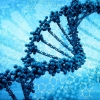 Российские ученые создали программу для определения мутаций генома