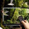 НТВ-ПЛЮС: Омичам доступно 130 каналов спутникового ТВ