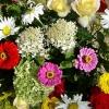 В ожидании первых посетителей прихорашивается юбилейная «Флора»
