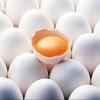 Омские яйца самые дешевые в Сибири