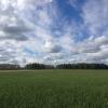В Омской области проведут инвентаризацию отходов твердых пестицидов