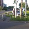 Водитель иномарки в Омске въехал в машину и столб, потеряв сознание