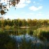 Юрий Федотов предлагает найти альтернативную площадку, чтобы уберечь омский парк