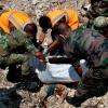 Нагнетание ситуации в Сирии приведет к военным действиям