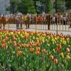 В Омской области 9 мая ожидается до +30 градусов
