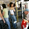 Партийцы привлекут общественность к решению транспортных проблем