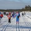 В «Лыжне России - 2016» поучаствовали 7 тысяч 606 лыжников Омска и области