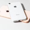 МТС продаст новые iPhone в рассрочку