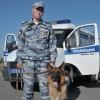 В Омске служебная собака за 10 минут нашла грабителя в черном спортивном костюме