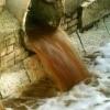 Омское предприятие два года сбрасывало в Иртыш стоки с гельминтами