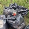 Региональная комиссия предлагает привлечь бизнесменов для решения проблемы утилизации мусора в Омске