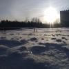 Снегопады в Омской области начнутся в конце недели