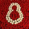 Цветы на праздник 8марта с доставкой для родных и знакомых